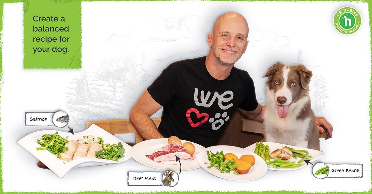 Healthy Dog Food Recipe Maker
